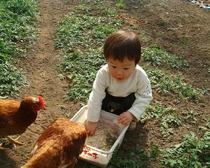 佑太と鶏.09.02.11.jpg