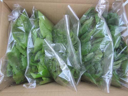 産直野菜セット.12.04.17.