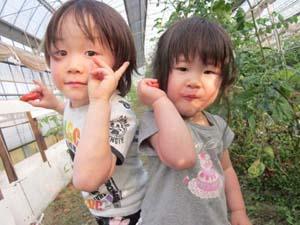 佑太と加奈子とトマト.11.06.04.jpg