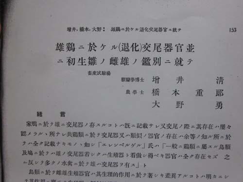 初生雛鑑別論文