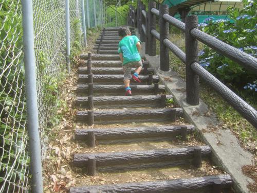 日本平動物園登山道.15.06.07.