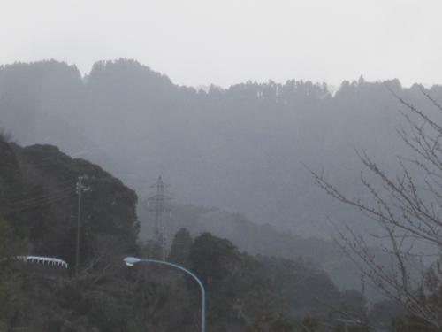 雪の降る静岡.13.01.26.