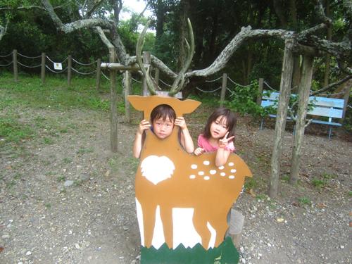 日本平動物園.13.07.13.