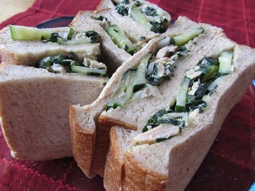 オカワカメときゅうり、ツナのサンドイッチ